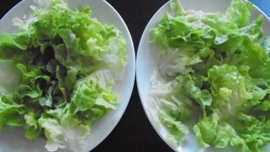 Salade de gésiers de volaille (2)