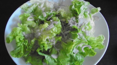 Salade de gésiers de volaille (3)