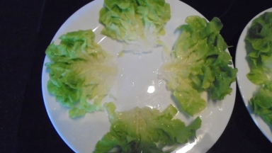 Salade melon et jambon fumé (15)