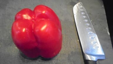 Tomates farcies au taboulé (12)