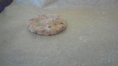 Cookies au chocalat, noix de coco et citron vert (13)
